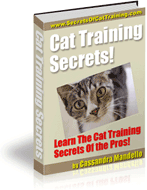 Cat Training Secrets